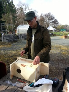 Kestrel box: a thoughtful approach