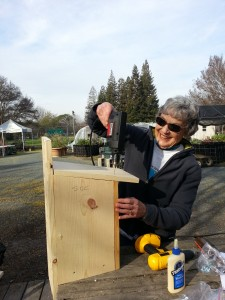 Kestrel box: Power tools - a woman's best friend